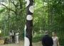 philippe-commande-forestart