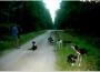 sylvain-cani-kart13-attelage-au-repos