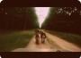 sylvain-cani-kart15-boucle-9kms-25kmsh