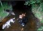 sylvain-cani-kart17-les-2-ponts-repos