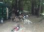 sylvain-cani-kart2