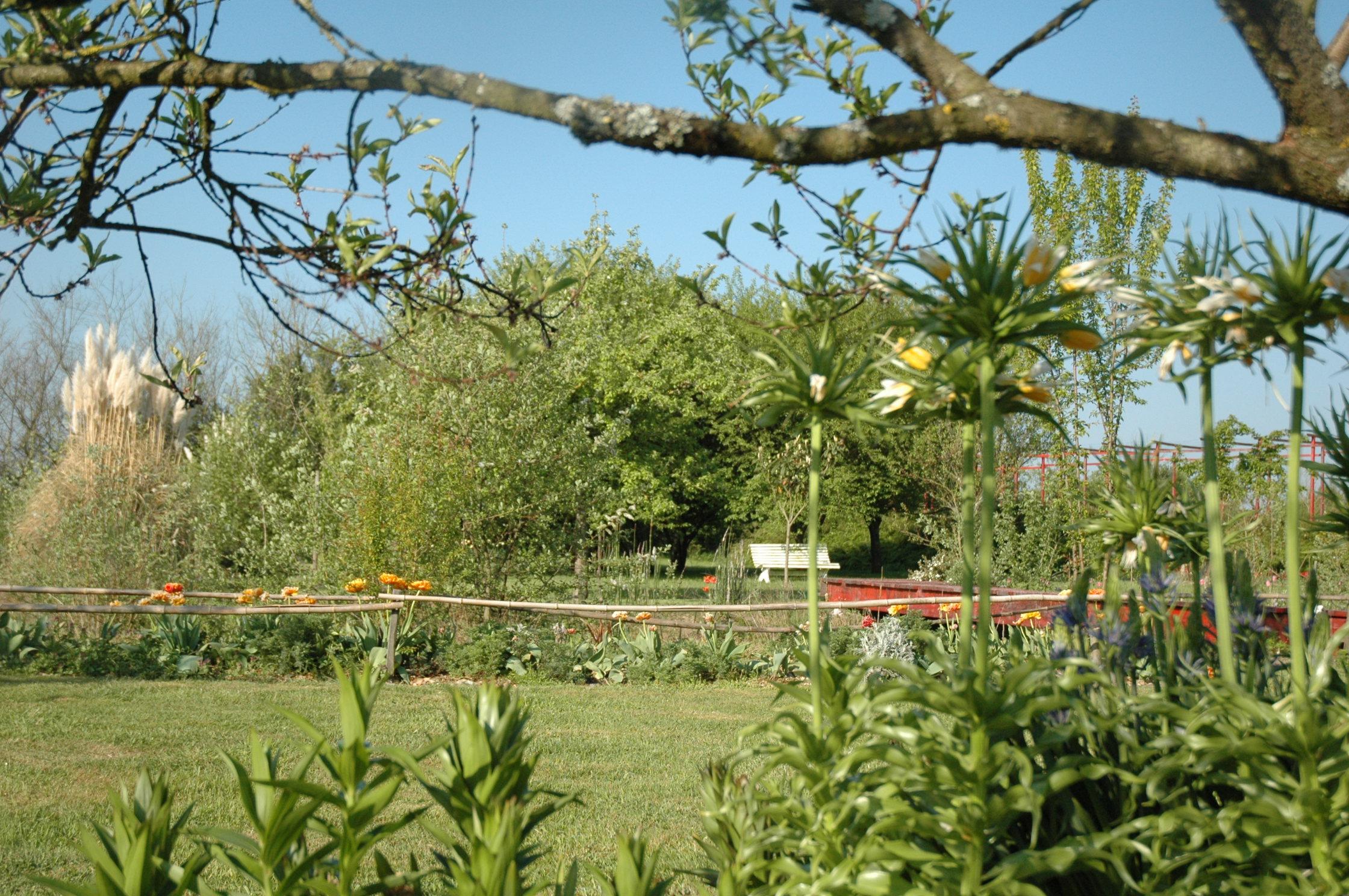 Jardin d 39 elis e association touristique centre auvergne - Jardin de chen ...