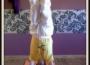 luc yoga 9