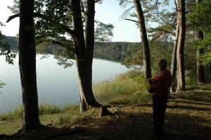 plan d'eau de la forêt de tronçais