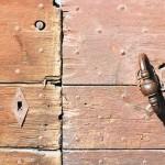 bois détail