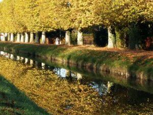 canal de berry st amandc18
